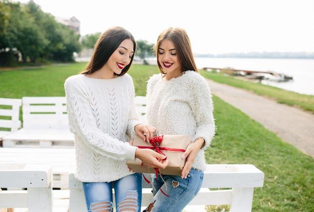 Menina que dá um presente a uma outra menina
