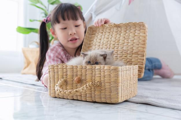 Menina que joga com gato na cesta de madeira em casa, conceito da amizade.