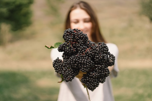 Menina segura nas mãos cachos de fruta preta sabugueiro sambucus nigra preto sabugueiro europeu preto ...