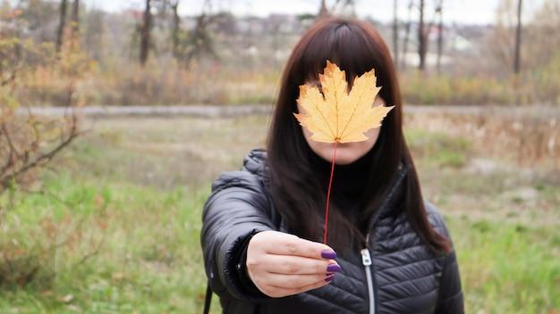 Menina segura uma folha de bordo amarela na frente dela. uma jovem cobriu o rosto com uma folha de bordo de outono amarela em um parque. linda garota, aproveitando o clima quente. humor de outono. aproveite a temporada.