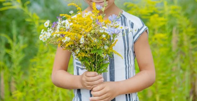 Menina segurando flores silvestres nas mãos de uma criança. foco seletivo.