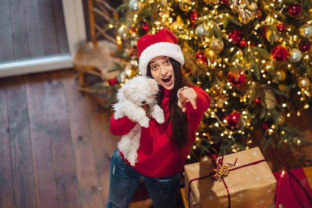 Menina segurando um cachorrinho nos braços na véspera de ano novo
