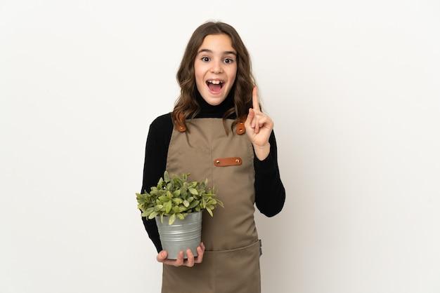 Menina segurando uma planta isolada no fundo branco com a intenção de perceber a solução enquanto levanta um dedo