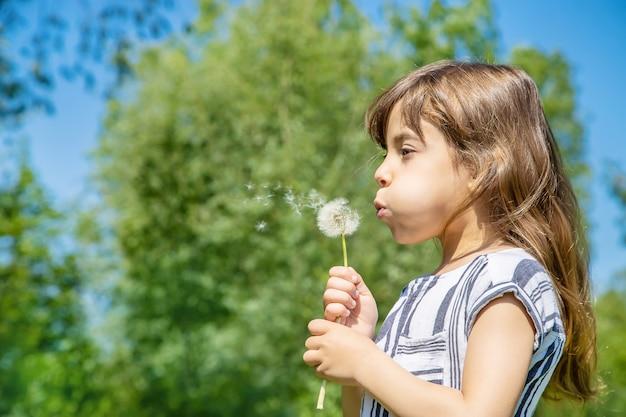 Menina, soprando dentes de leão no ar. foco seletivo.
