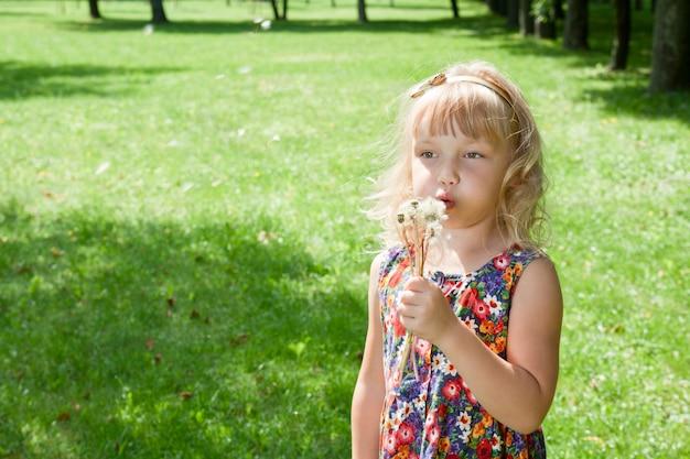 Menina, soprando, ligado, dandelions