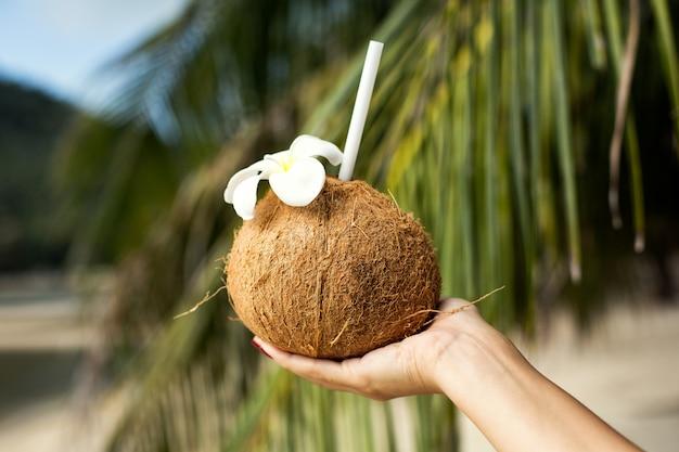 Menina tem um coquetel em um coco na mão, no contexto de uma ilha tropical.