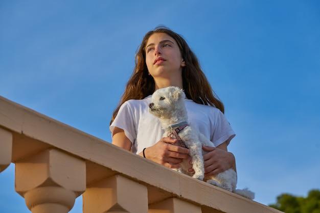 Menina, tocando, com, maltichon, cão, em, um, balconade