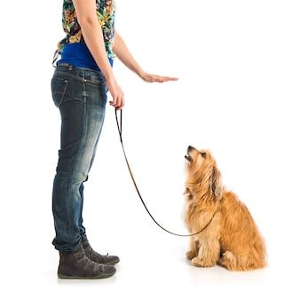 Menina treinando um cachorro