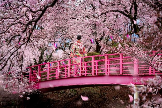 Menina viajante andar na ponte de madeira no jardim de flores de sakura