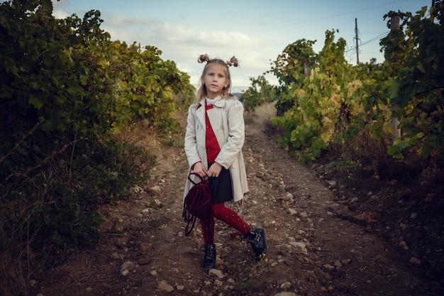 Meninas em setembro para colher vinhas, colete os cachos de uva selecionados na itália para a grande colheita. id de conceito biológico, comida orgânica e vinhos finos feitos à mão