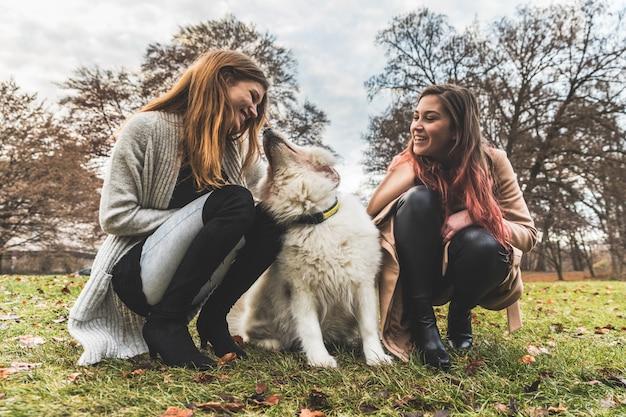 Meninas, tocando, com, um, cão, parque
