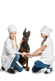 Meninas vestidas como cachorro tratado por médico