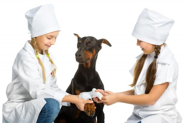 Meninas vestidas como cães tratados com veterinários