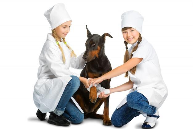 Meninas vestidas como cães tratados por médicos