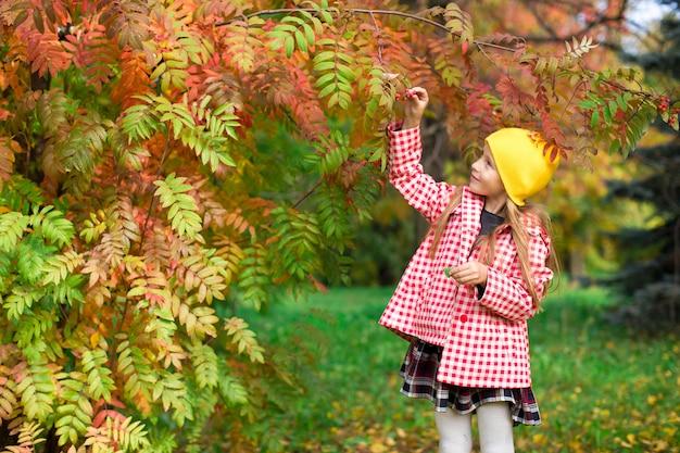 Menininha, em, outono, parque, ao ar livre
