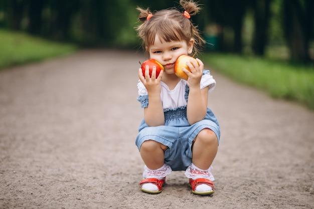 Menininha, segurando, dois, maçãs