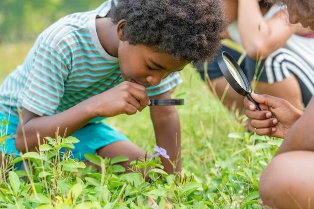 Menino afro-americano com os amigos na grama que explora e que olha a natureza com a lupa. conceito exterior da educação.