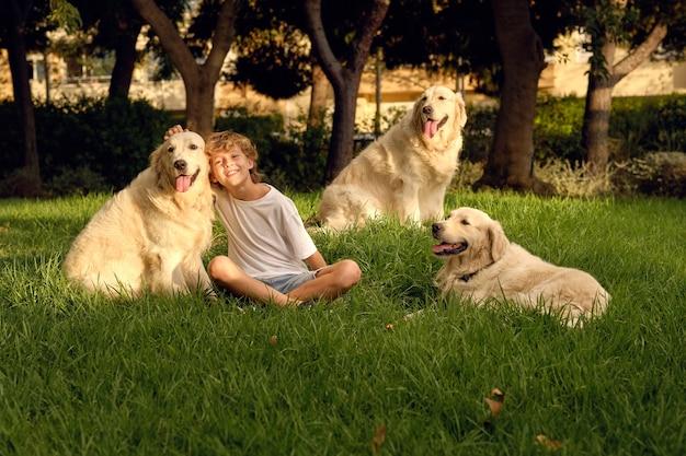 Menino alegre com cachorros no gramado do parque