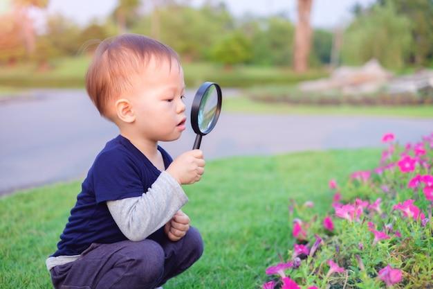 Menino asiático da criança que explora o ambiente olhando através de uma lupa no dia ensolarado