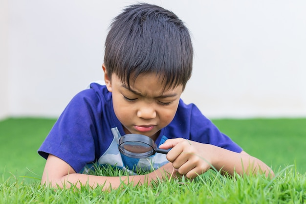 Menino asiático da criança que guarda e que olha com a lupa na árvore da flor e no assoalho do campo de grama verde. aventura, explorador e garoto de aprendizado.