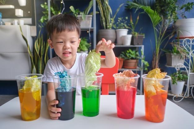 Menino asiático do jardim de infância se divertindo fazendo o experimento do repolho arco-íris