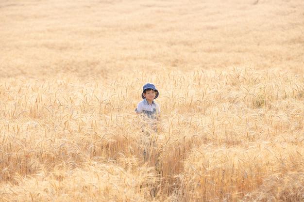 Menino asiático que tem o divertimento e que joga em um campo de trigo no verão.
