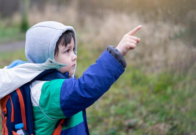 Menino ativo, apontando o dedo para o céu enquanto caminhava no parque florestal