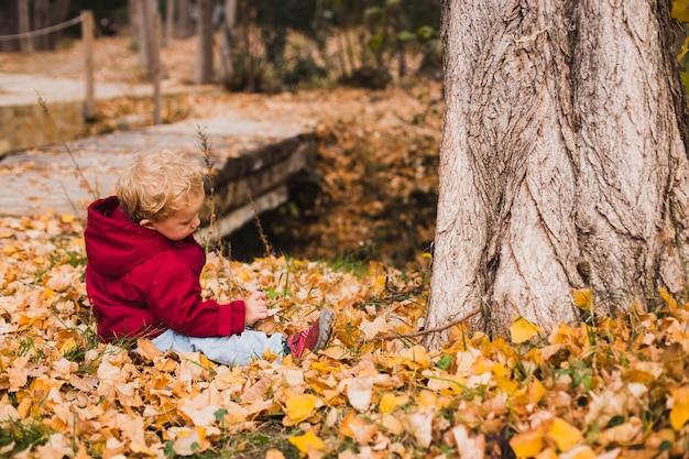 Menino bem protegido dos anos de idade dois que encontra-se nas folhas secas caídas no outono.