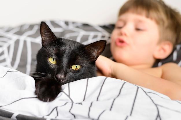 Menino bonitinho acariciando seu gato em casa