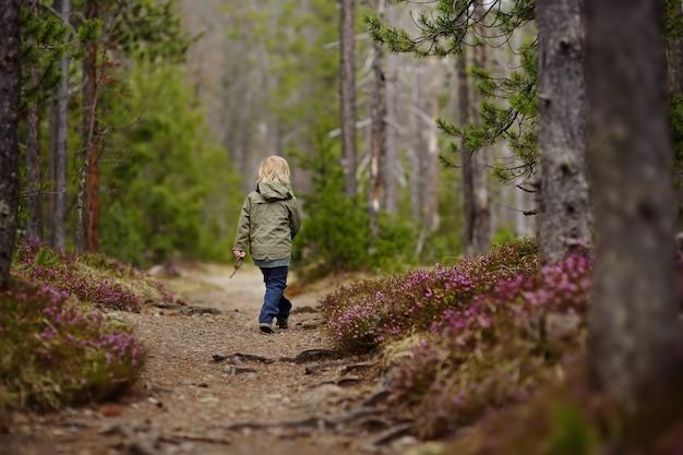 Menino bonitinho caminha no parque nacional da suíça na primavera.