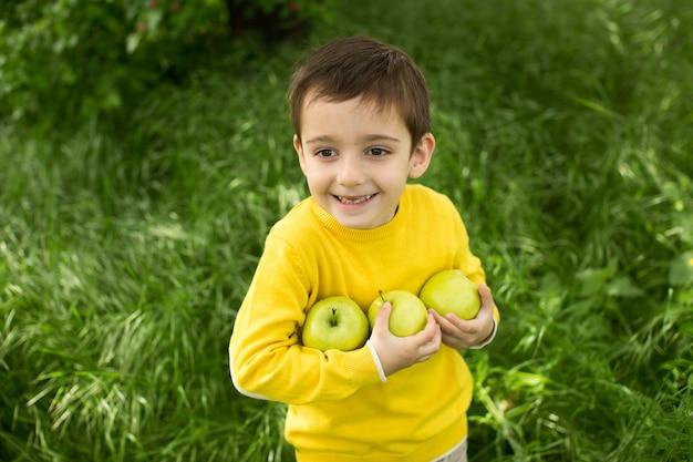 Menino bonitinho colhendo maçãs em um fundo de grama verde em dia ensolarado. nutrição saudável.