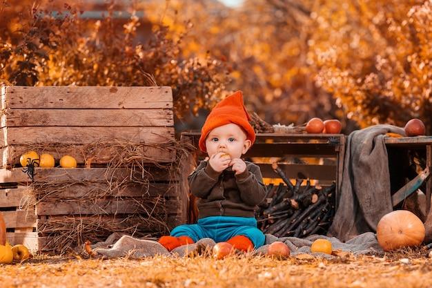 Menino bonitinho com uma fantasia de gnomo, sentado na grama com um gato preto, rodeado por uma decoração agrícola e comendo uma maçã.