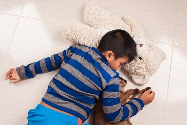 Menino bonitinho dormindo com ursinho de pelúcia e gato marrom
