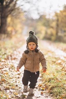 Menino bonitinho em um parque de outono