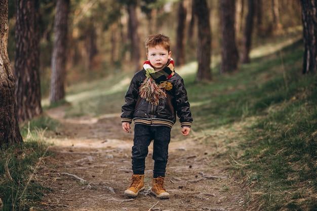 Menino bonitinho na floresta sozinha