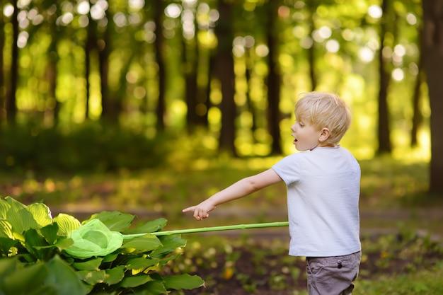 Menino bonitinho pega borboletas com rede de colher no prado ensolarado