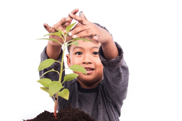Menino bonitinho plantando árvore
