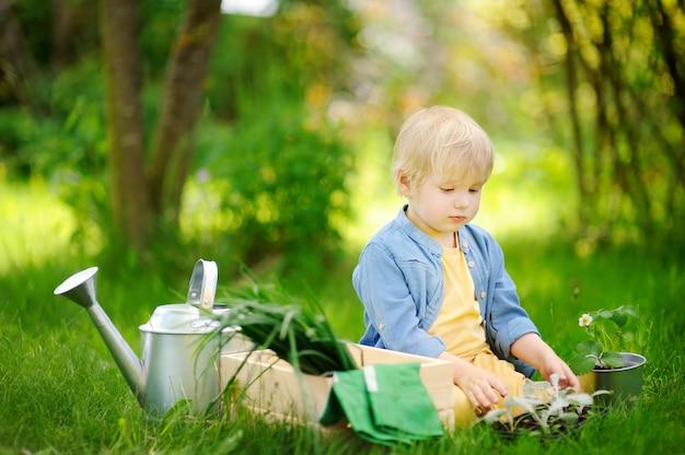 Menino bonitinho segurando mudas em potes de plástico no jardim interno em dia de verão