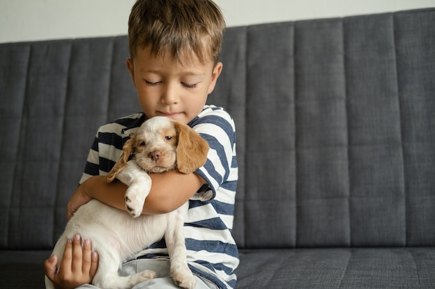 Menino bonitinho segurar o rosto de cachorrinhos de spaniel russo vermelho e branco no cobertor branco. cuidado de animais de estimação e conceito amigável. amor e amizade entre humanos e animais.