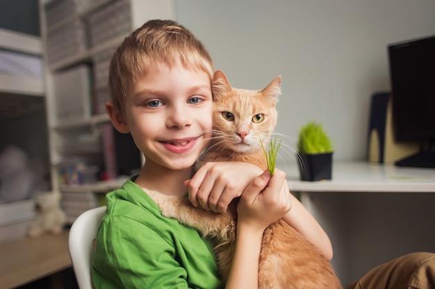 Menino bonito, 8 anos de idade, alimenta lindo gato malhado vermelho grande com grama
