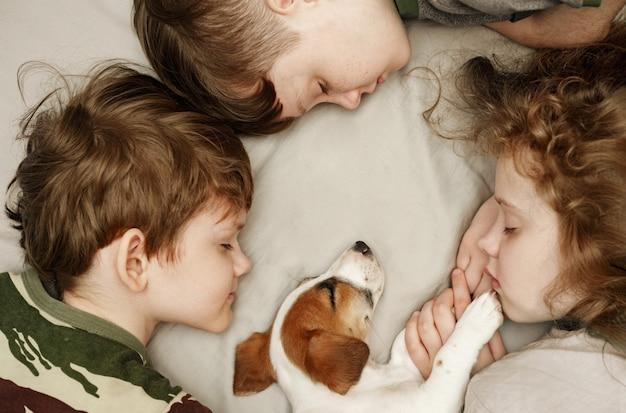 Menino bonito e menina que abraçam um cachorrinho.