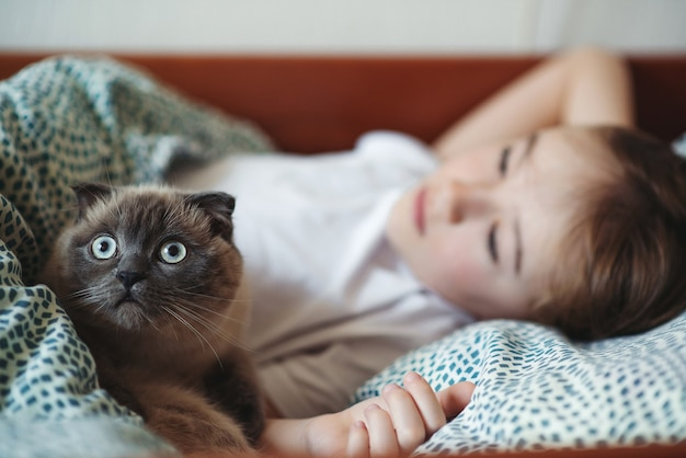 Menino bonito e seu gato acariciando na cama de manhã.