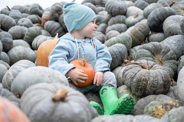 Menino bonito e sorridente garoto caucasiano sentado em um monte de abóboras, outono, colheita de abóboras