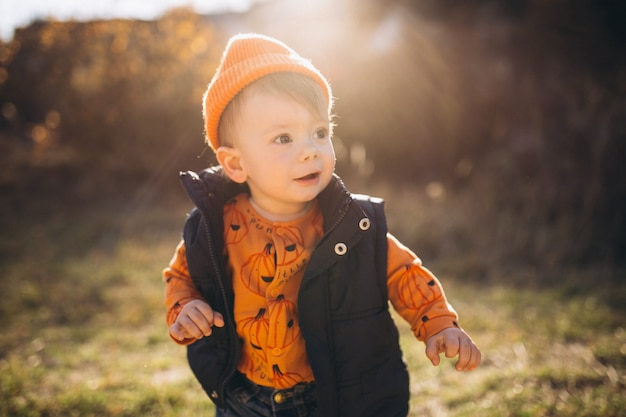 Menino bonito em um parque de outono