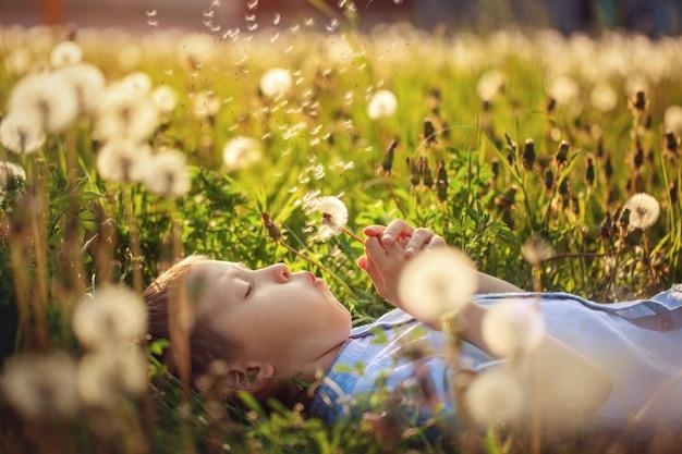 Menino bonito, soprando sobre leão deitado na grama em dia claro e ensolarado