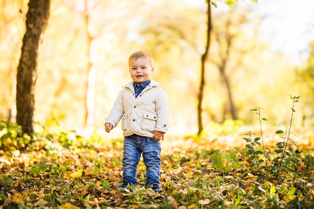 Menino brincando na folhagem amarela. outono no jovem parque da cidade.