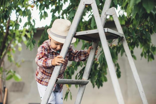 Menino caucasiano com chapéu usando escadas para comer cereja no jardim perto da árvore