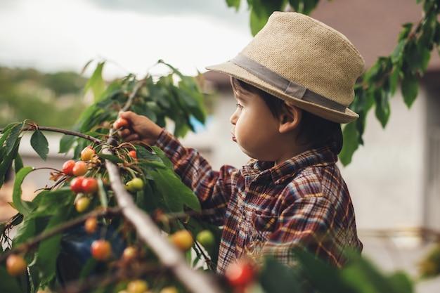 Menino caucasiano comendo cerejas da árvore enquanto usava um lindo chapéu lá fora