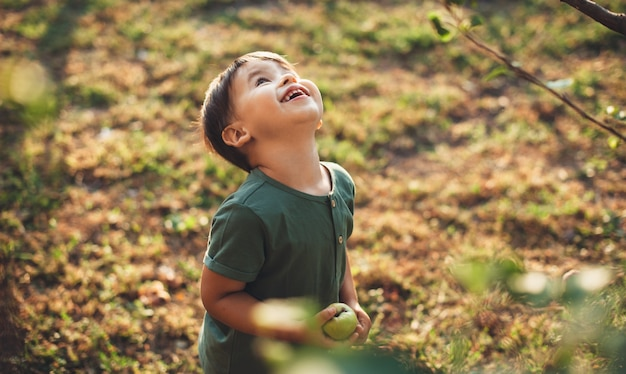 Menino caucasiano olhando para a macieira em busca de outra fruta