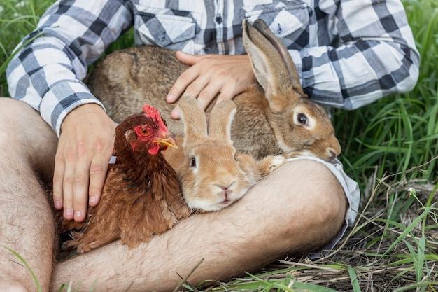 Menino close-up, brincando com coelhos e frango